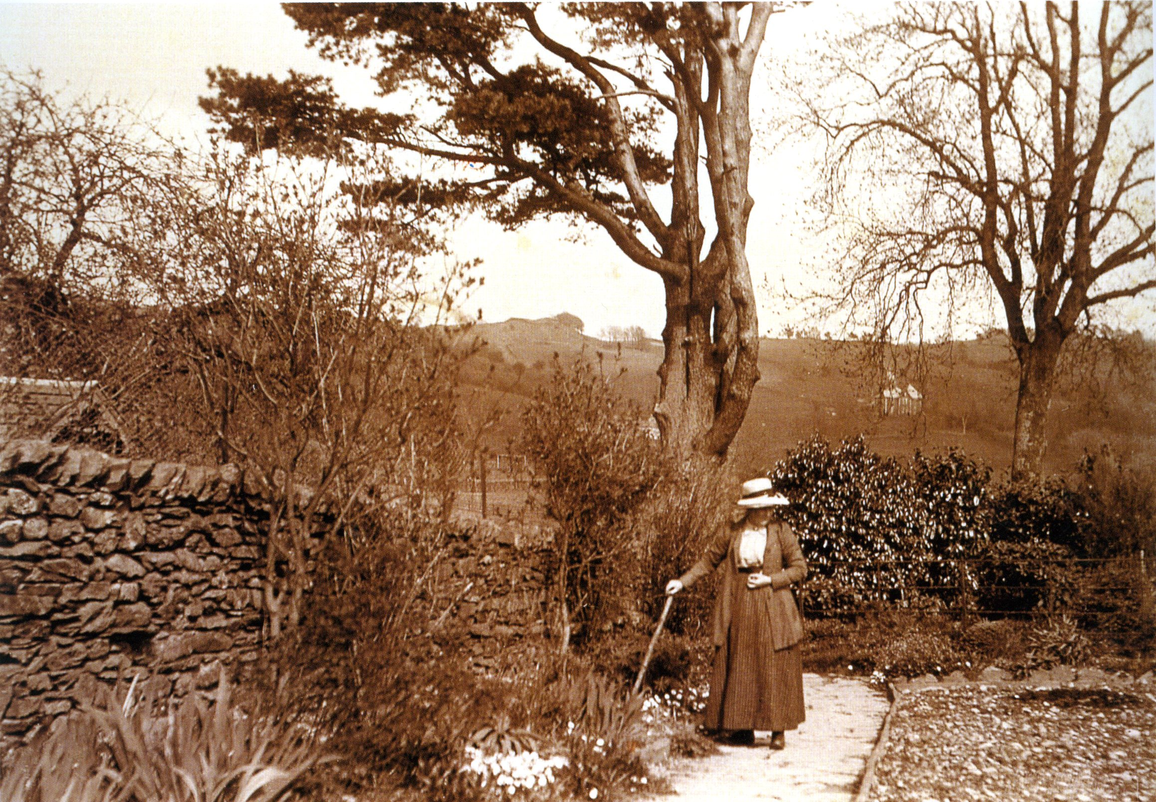 Beatrix Potter How To Be A Naturalist Better Living