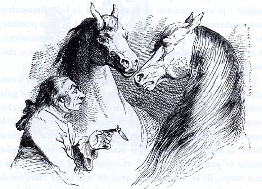 "J. J. Grandville, illus. of ""Gulliver's Travels"" (1856)"