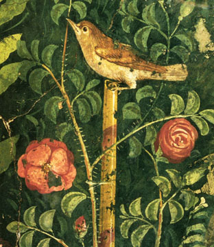 Mural painting of nightingale from Pompeii