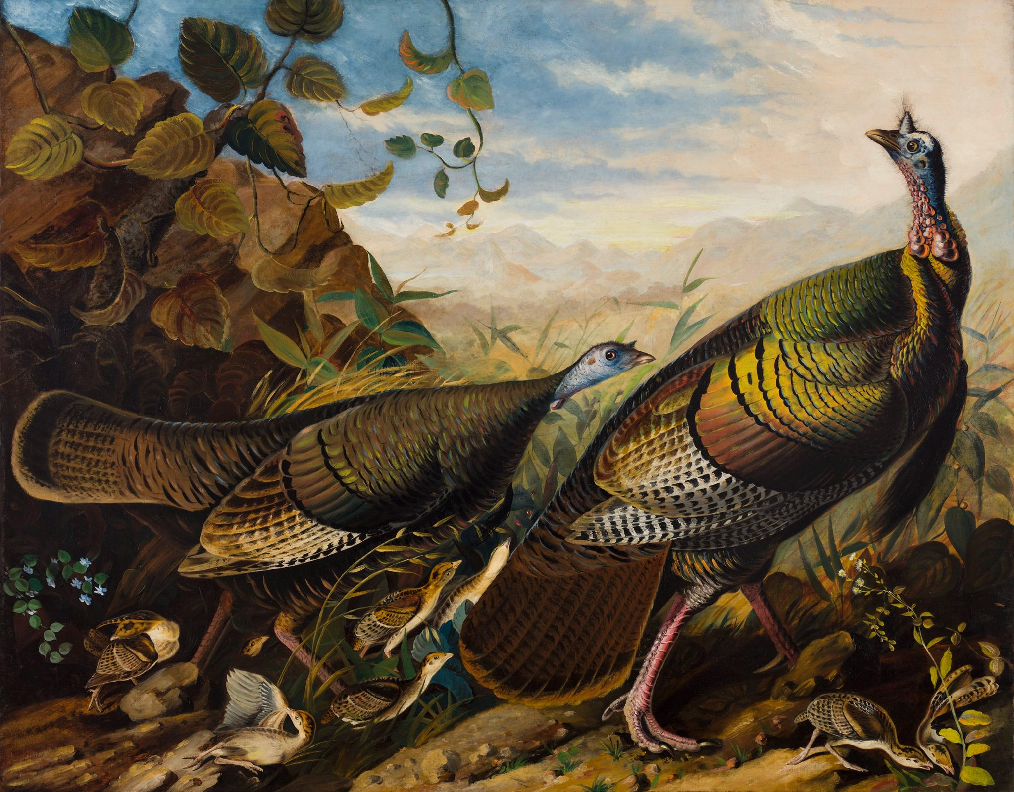 "Audubon, ""Wild Turkey Cock, Hen, and Young"""