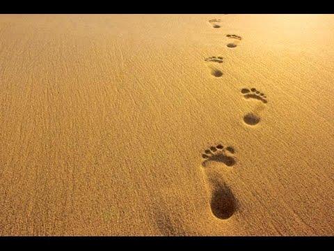 Google Footprints